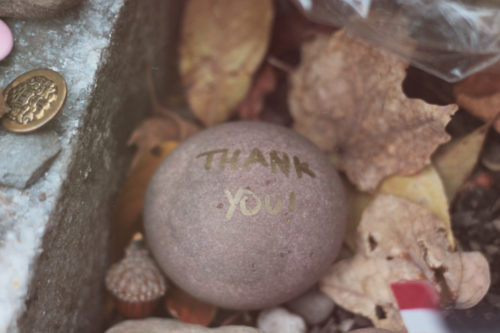 "A stone with the words ""Thank you!"" written on it and left at Susan B. Anthony's gravesite by visitors."